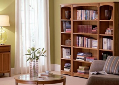 Nathan Shades bookcases